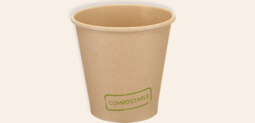 Bagasse-Products